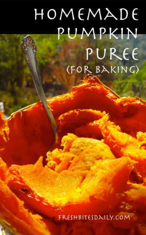 Roasted Pumpkin Puree at FreshBitesDaily.com