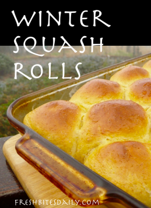 Winter Squash Rolls at FreshBitesDaily.com