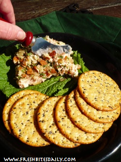 If you have a good quality canned salmon, this dip may just blow you away