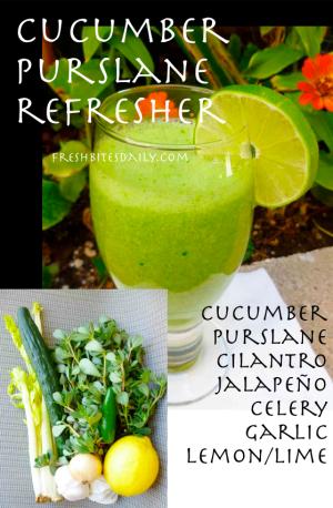 Cucumber Purslane Refresher at FreshBitesDaily.com