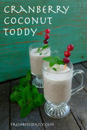 Cranberry Coconut Toddy at FreshBitesDaily.com