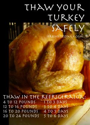 Turkey Thawing Tip at FreshBitesDaily.com