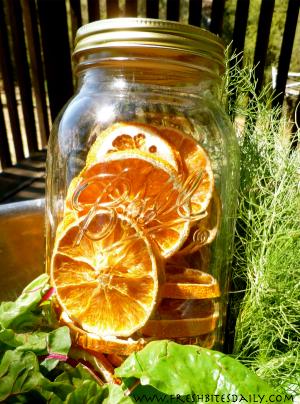 Dried Orange Slices at FreshBitesDaily.com