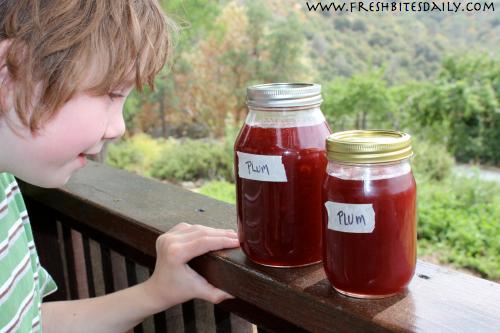 Wild Plum Jam at FreshBitesDaily.com