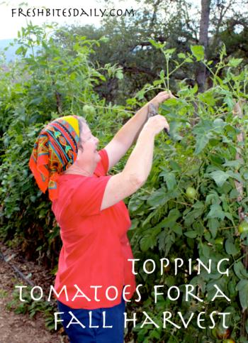Topping Tomatoes Tip at FreshBitesDaily.com