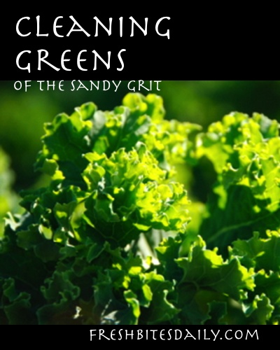 Cleaning your garden greens
