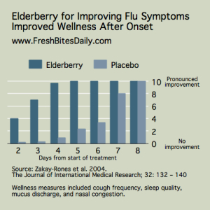 Elderberry for Flu Symptoms at FreshBitesDaily.com