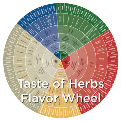 The Taste of Herbs Flavor Wheel