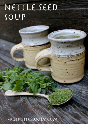 Nettle seed soup for a quick nutrition fix