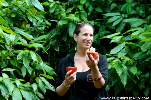 Interior of Cacao Pod via FreshBitesDaily.com