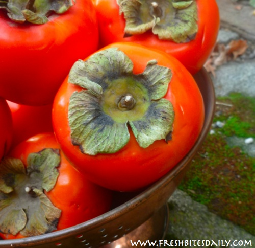 Seven strange-growing foods you will want to see -- Persimmons