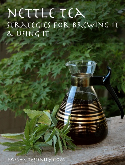 This tea or infusion may knock out your seasonal allergies or may just keep you healthy with a brewing pro tip