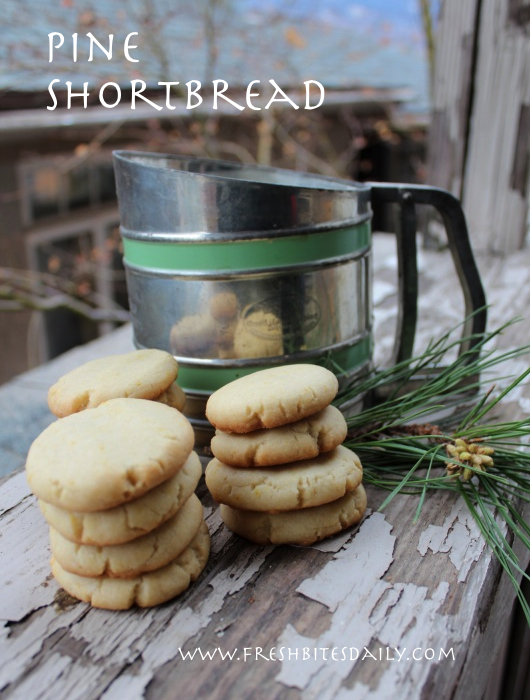 "Pine needle shortbread cookies and other recipes from our adventures on ""The Lost Road"""