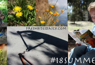Flavors of the forest, adventures, and #18summers