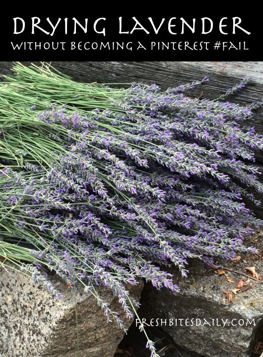 "Drying your own lavender without becoming a ""Pinterest #fail"""