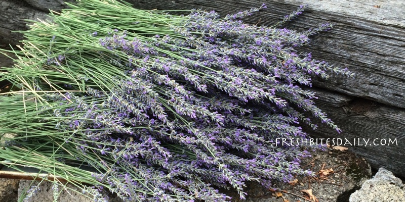 "Drying your own lavender without becoming a ""Pinterest #fail"" (with a video bonus)"