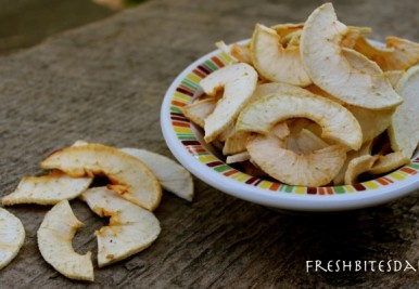 Dehydrating apples is fairly simple, but what apples do you use? How do you find them? Get the details here