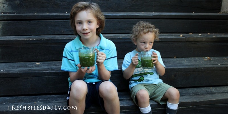 The two boys who won't eat vegetables, a story that has nothing to do with hiding greens in meatloaf or zucchini cake…