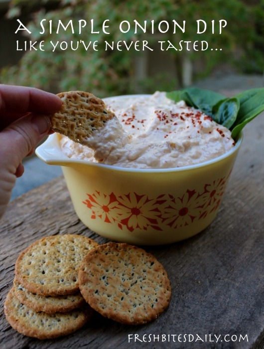 A simple onion dip like you've probably never tasted
