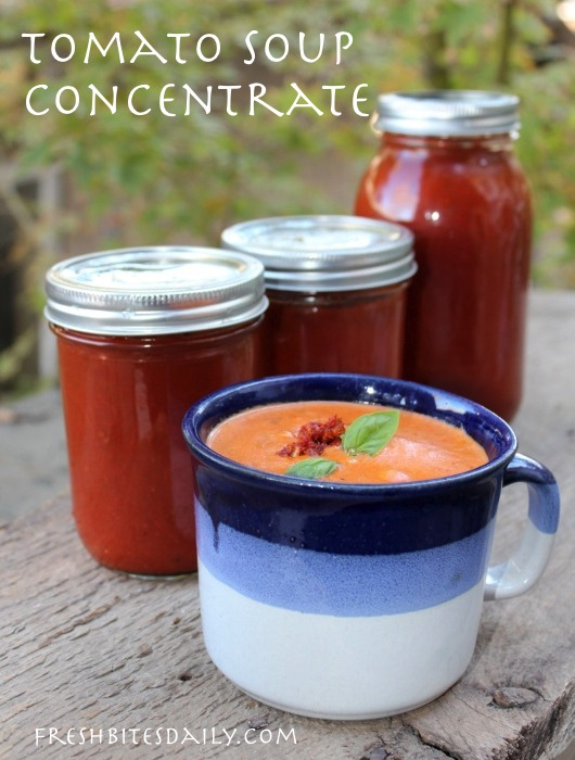 Homemade tomato soup concentrate -- Your solution to canned tomato soup