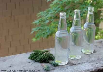 A gourmet soda: An ode to your pine tree