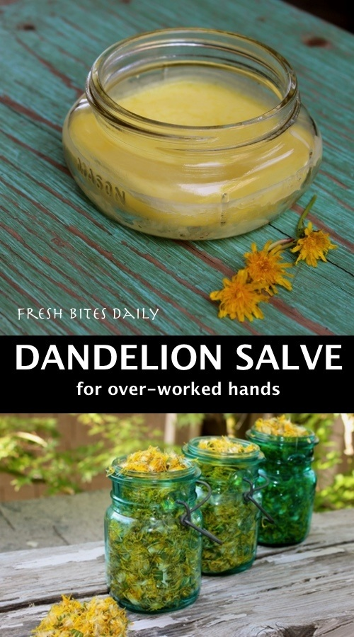 Dandelion Salve: A Hard-Working Natural Remedy for Dry Hands