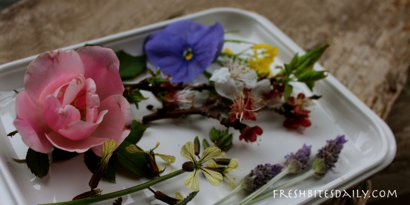 Your Edible Flower Starting Point Salads Syrups Oils