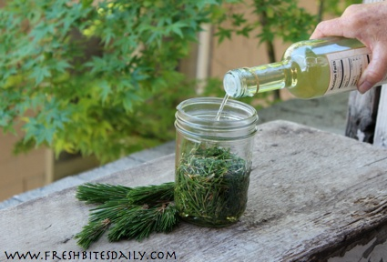 A foresty vinegar for your gourmet stash