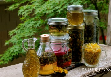 Turn these weedy flowers into culinary treasures and even improve your skin!