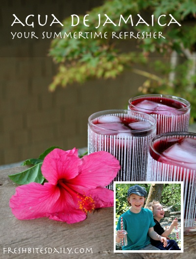 Agua de jamaica -- A hibiscus punch for a hot summer day