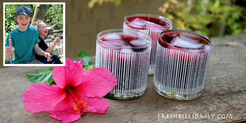 Agua de jamaica — A hibiscus punch for a hot summer day