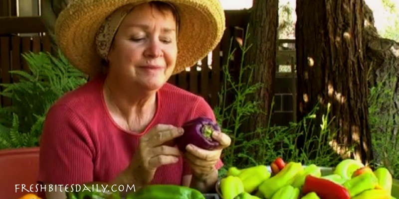 Exploring the world of sweet peppers