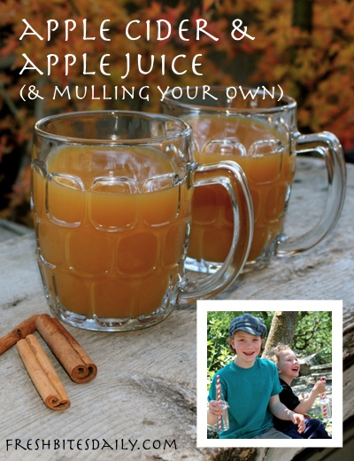 How to get regular apple juice to taste like cider (plus a cider taste test and cider mulling tips)