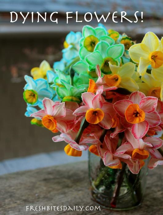 Dye your flowers. A simple, no-fail technique