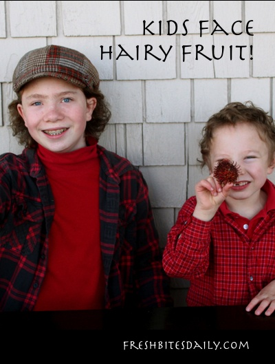 "Kids face rambutan -- ""hairy fruit""!"